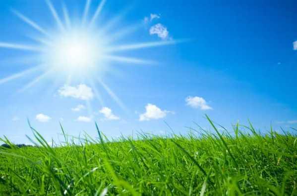 Sunshine_Grass__Email__EmailAptitude_Skymosity